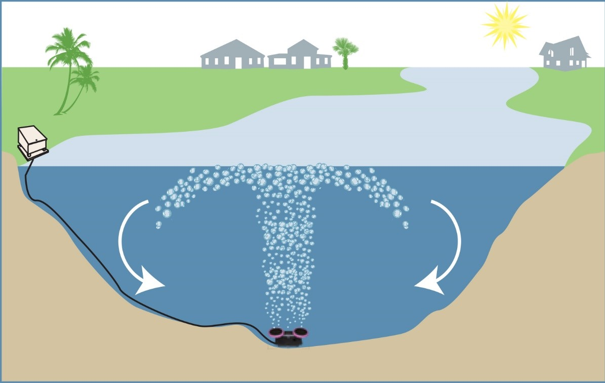 Why use an aeration system for your pond or lake